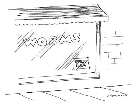 030508-worms.jpg