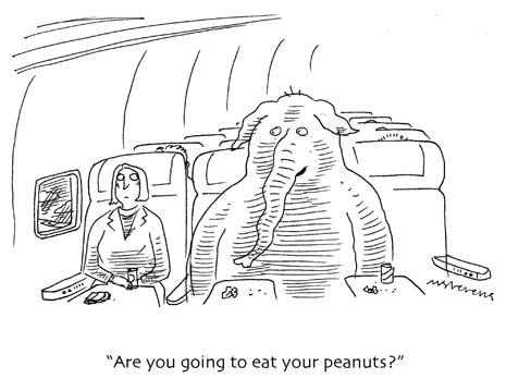 040425-peanuts.jpg