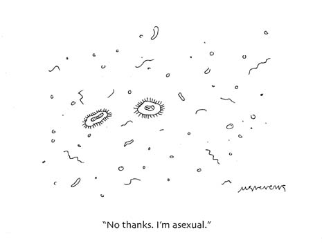 050509im-asexual.jpg